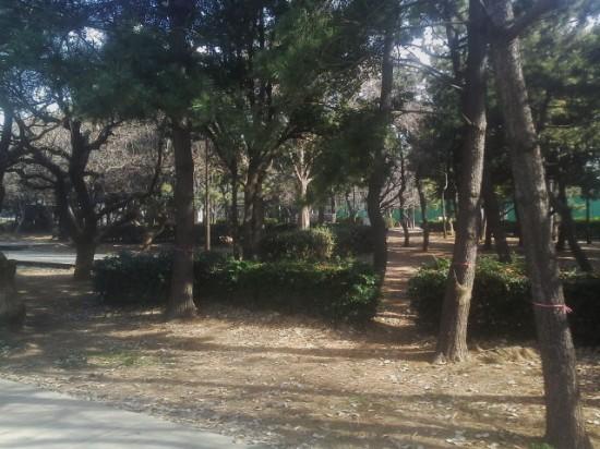 潮風公園 バーベキュー会場の様子