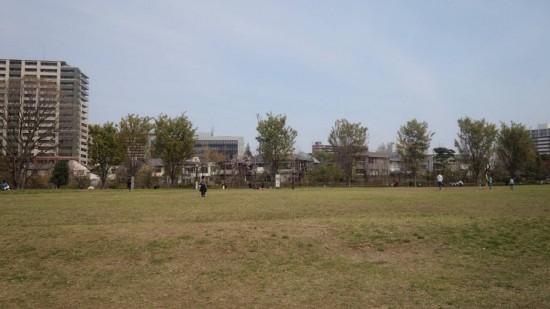 いこいの森公園の広場