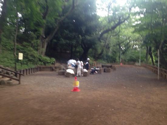 池上本門寺公園2