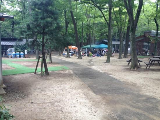 清水公園8