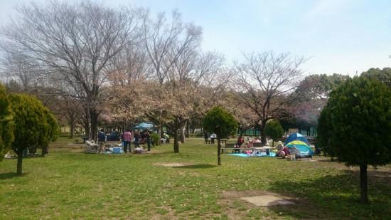篠崎公園 2015年3月28日